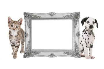 Silver victorian baroque empty picture frame with a tabby cat and a dalmatian puppy on each side of the frame