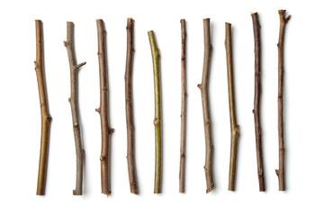 Row of dry wooden twigs Fototapete