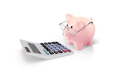 Piggy and calculator