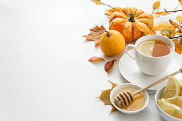 autumn healthy tea on white background