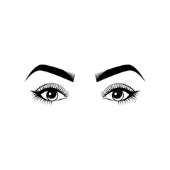 Female Eyes and Eyebrows. Beauty Industry Design Elements Vector