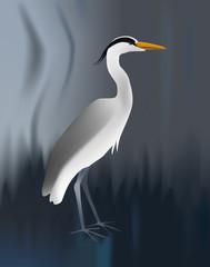 Vector illustration of grey heron on blurred background. Standing light bird.