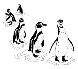 Penguin on outline ice. Vector Illustration black and white, isolated on white background.