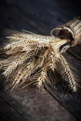 Wheat and barley on wood