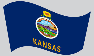 Flag of Kansas waving on gray background