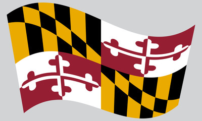 Flag of Maryland waving on gray background