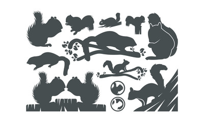 squirrel vector siluet illustration