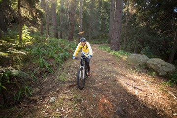 Male biker cycling in countryside
