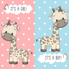 Giraffes boy and girl