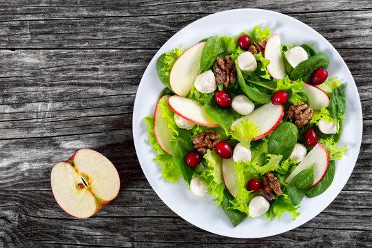 salad of apple, spinach, mini mozzarella balls, lettuce leaves,