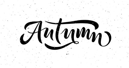Autumn lettering typography