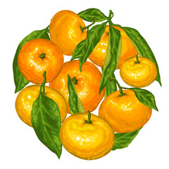 Circle with mandarins. Tropical fruits and leaves