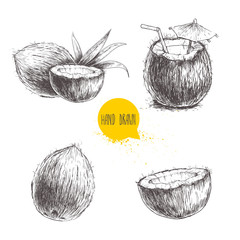 Hand drawn coconut set. Cocktail isolated on white background. Sketch vector tropical food illustration.