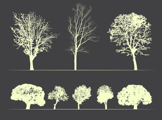 vector trees on soft dark background