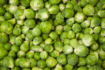 A whole page of Brussel sprout background texture