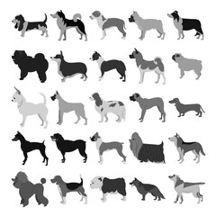 Set of dog breeds in dark colors