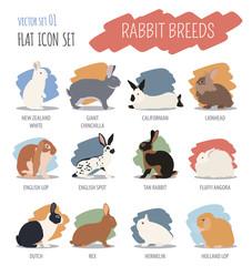 Rabbit, lapin breed icon set. Flat design