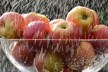 dojrzałe jabłka w strugach deszczu - zbliżenie