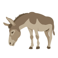 Donkey vector illustration style Flat
