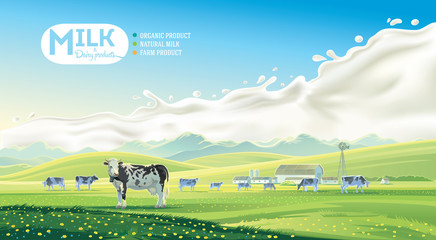 Rural landscape with cows and farm with mountain scenery, and splash milk in background. Vector illustration.