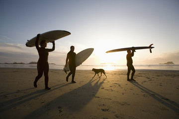 Silhouette Of Three Surfers And A Dog; Chesterman Beach Tofino Vancouver Island British Columbia Canada