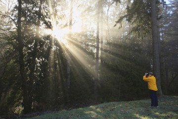 A Person Photographs The Sun Shining Through Morning Fog And Trees; Happy Valley, Oregon, United States Of America