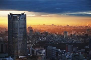 City skyline at sunset, Tokyo, Japan