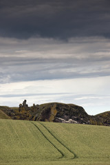 Tire Tracks Across A Field; St. Abb's Head, Scottish Borders, Scotland