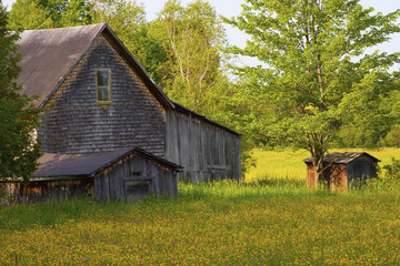 Old Barn And Sheds; Ville De Lac Brome, Quebec, Canada