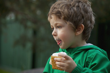 Young Boy Eating A Smore Cookie; St. Albert, Alberta, Canada
