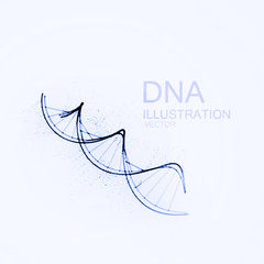 DNA chain vector illustration.