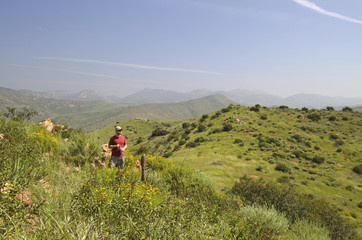 A Springtime Hike In The Mountains Of San Diego County; California, United States of America