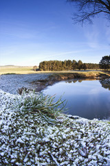 Traces Of Snow On The Grass Along A Stream; Northumberland, England