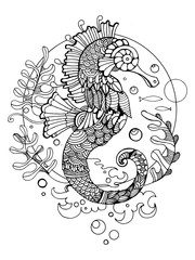 Sea horse coloring book for adults vector