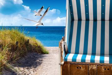 Fototapete - Strandkorb mit Möwen an der Ostseeküste in Deutschland