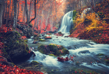 Photo sur Aluminium Cascade Autumn forest with waterfall at mountain river at sunset. Colorful landscape with trees, stones, waterfall and vibrant red and orange foliage. Nature background. Fall woods. Vintage toning