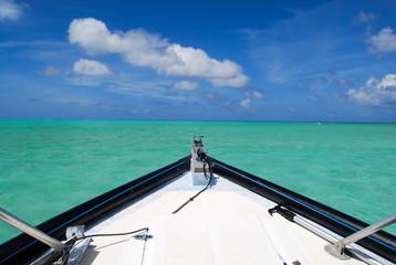 Into the Wide Open Sea