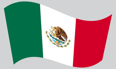 Flag of Mexico waving on gray background
