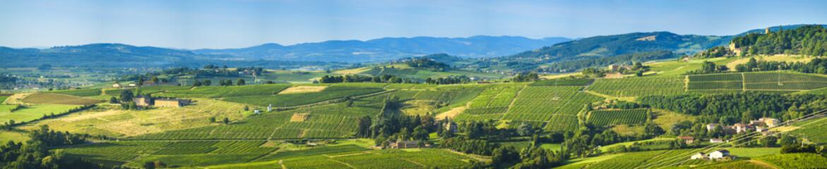 Panoramic view of Beaujolais land, France