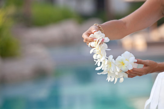 Woman hands holding Flower lei garland of white plumeria.
