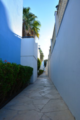 Classical Greek architecture at dawn: white and blue wall, palm trees, sun