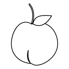 Apple icon. Outline illustration of apple vector icon for web