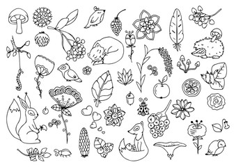 Vector illustration Zen Tangle, set the forest, animals and flowers. Doodle drawing. Meditative exercises. Coloring book anti stress for adults. Black white.