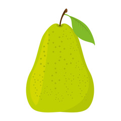 pear fresh fruit isolated icon vector illustration design