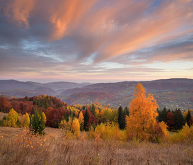 Autumn landscape with a beautiful forest in the mountains