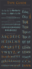 Type anatomy guide