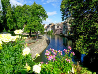 City river surrounded by flowers
