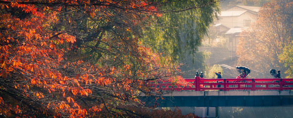 Foto op Canvas Japan autumn morning in takayama