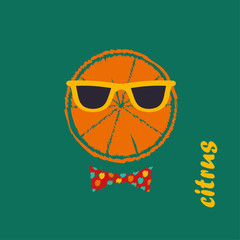 Poster Citrus in the glasses. Vector illustration.