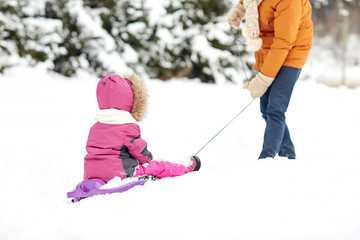 father pulling sled with child in winter